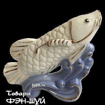 Арована рыба приносящая богатство