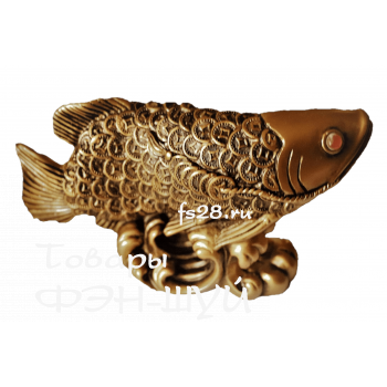 Арована- рыба удачи