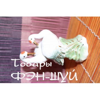 Пара Цапель Фен шуй - символ любви